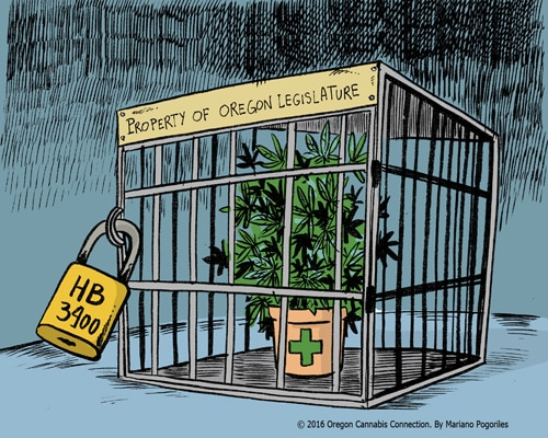 Marijuana In A Cage