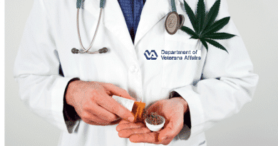VA Doctor with cannabis