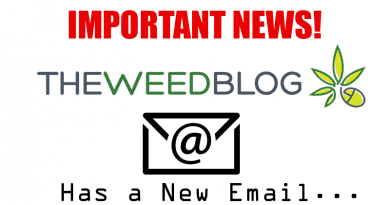 New email The Weed Blog