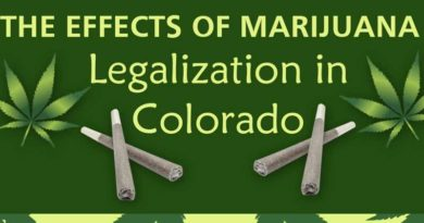 September, infographic, marijuana in Colorado, effects of legalization, colorado, marijuana. image