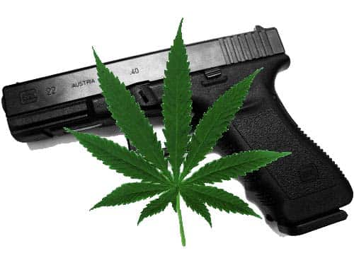 marijuana, guns, second amendment, cannabis, posses, carry