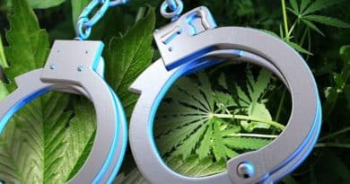 arrests, marijuana, FBI, statistics, Marijuana arrests in US
