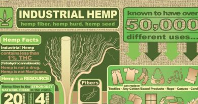Industrial Hemp Infographic, Industrial Hemp Uses, Industrial, hemp, 50,000, uses, products