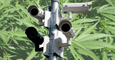 Marijuana, cannabis, surveillance, Government, Seed to Sale, tracking, intrusion,state