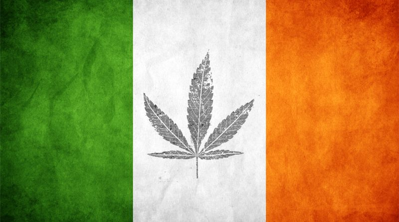 Ireland, medical,marijuana,Gino Kenny,TD,Harris