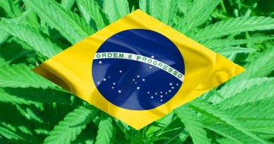 Sativex, Brazil, Metavyl, Approve, Anvisa, GW, cannabis, marijuana, medical