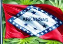 Arkansas Doctors Slow to Accept Medical Marijuana