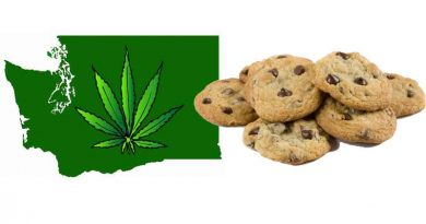 Medical Marijuana, Barclay, River, Blake, Washington, School, Marijuana in Washington Schools