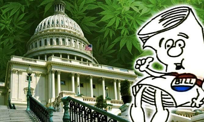 Federal,Bills,Blumenhaur,Wyden,2017,Bipartisan,marijuana,reform,cannabis