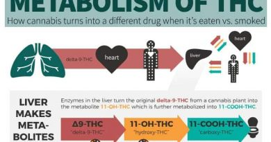 THC metabolism,Edibles,Smoked,Differences,edible effects,duration
