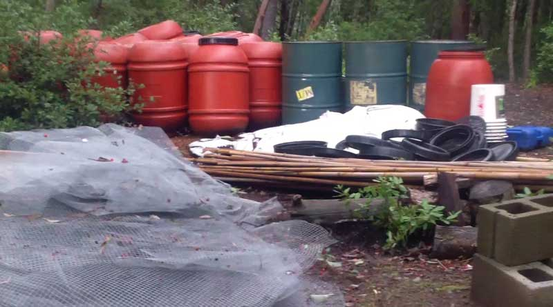 Humboldt,Emerald Triangle Clean up,Damage,environment,growing