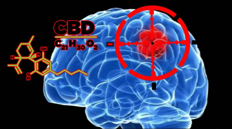 CBD,Brain Tumors,CBD treatment for Brain Tumors,UK,Nottingham University,Richard Grundy,children