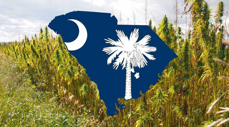 South Carolina,Hemp,Legal,farming,McMaster,Legalization