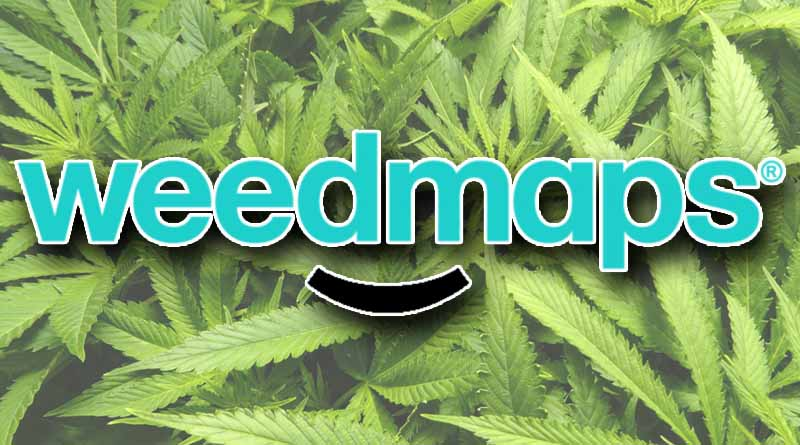 California, Weedmaps, Cease and Desist, Cannabis Advertising