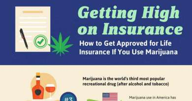 infographic, life insurance, cannabis and life insurance, smoking, marijuana, cannabis
