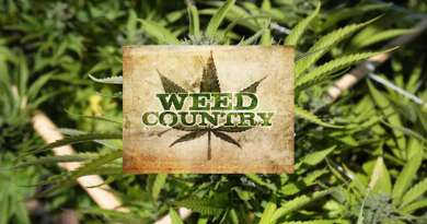 Weed Country, Discovery Channel, Mike Winters, Mike Boutin, Tawni Boutin,