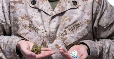 Bill Introduced in Congress Allows Veteran Use of Medical Marijuana and Provides for Research