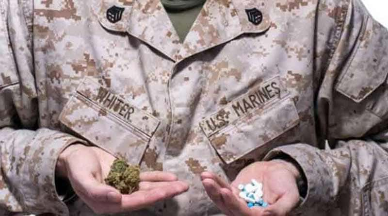VA Medical Marijuana, Bill Nelson, Brian Schatz, medical marijuana at VA