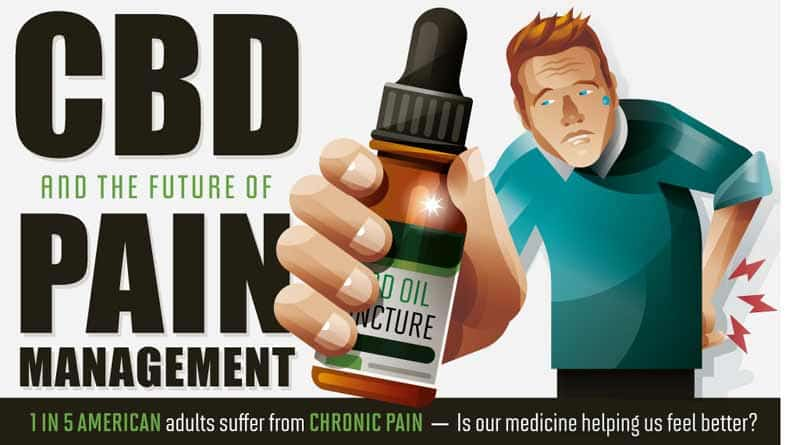 CBD for Pain, Infographic, CBD and Pain, Cannabis and Pain