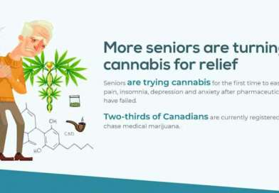 How Medical Cannabis Can Help With Pain Management: Infographic