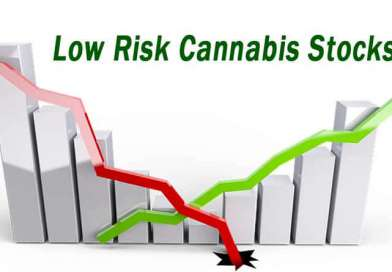 Are There Low Risk Cannabis Stocks?