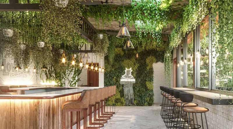 Lowell Farms: A Cannabis Cafe opens in West Hollywood, CA