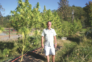 Cliff Thomason of Orhempco in front of a high CBD plant they grew this past season