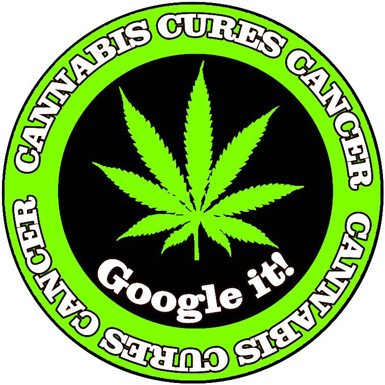 cannabis_cures_cancer_google_it.jpg